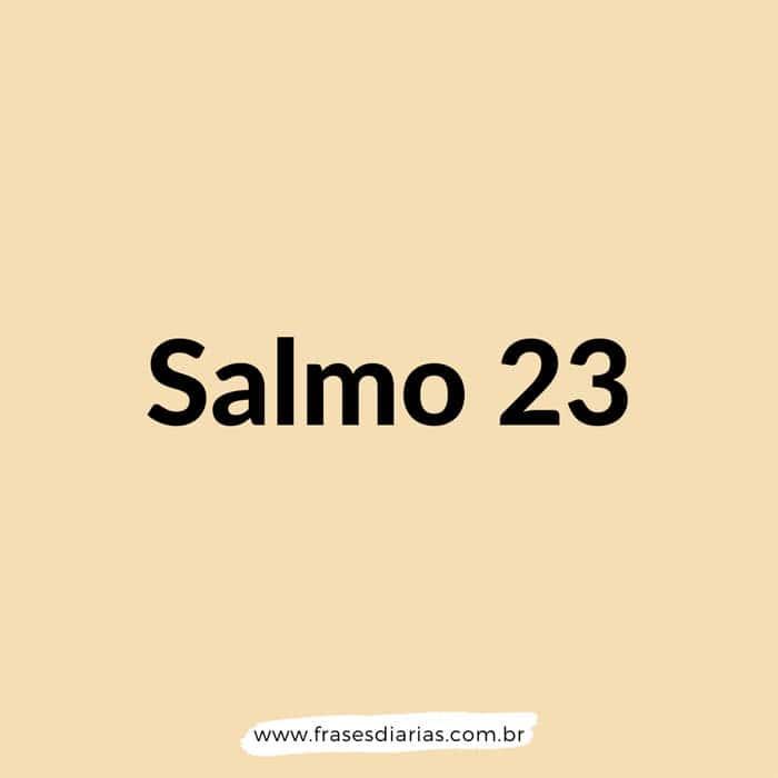 Salmos 23 - O SENHOR é o meu pastor, nada me faltará. Deitar-me faz em verdes pastos, guia-me mansamente a águas tranqüilas...