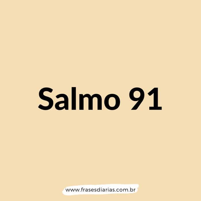 Salmos 91 - Aquele que habita no esconderijo do Altíssimo, à sombra do Onipotente descansará. Direi do Senhor: Ele é o meu Deus...